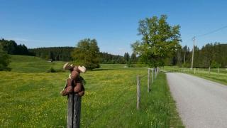 Rund um Murnau
